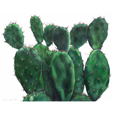 Pattie the Paddle Cactus on Canvas Poster