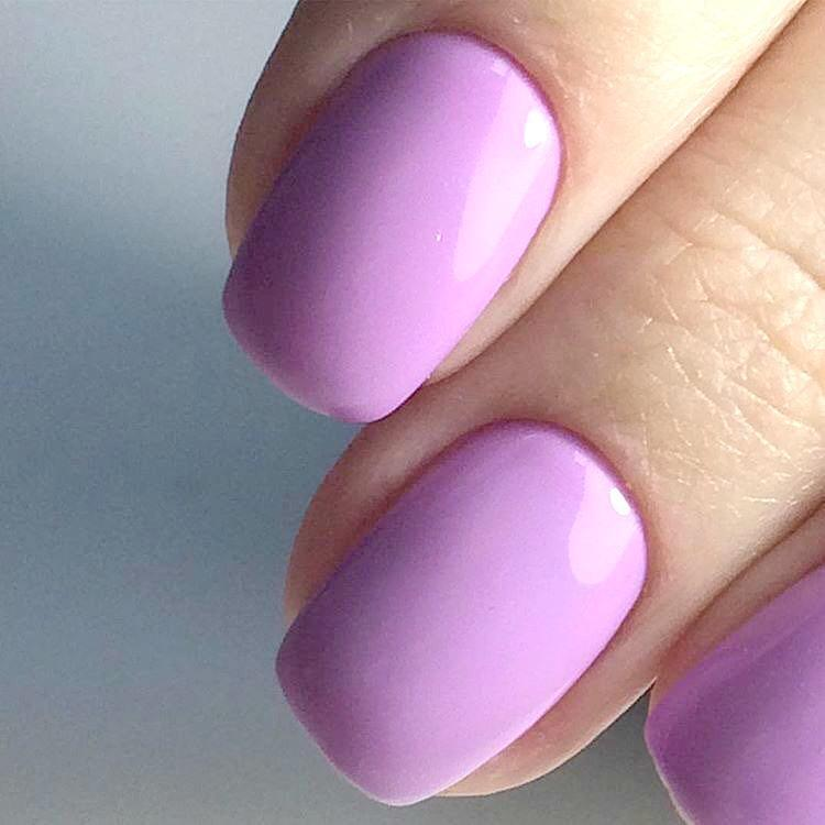 Erica's Russian Bit Set-Gel Essentialz