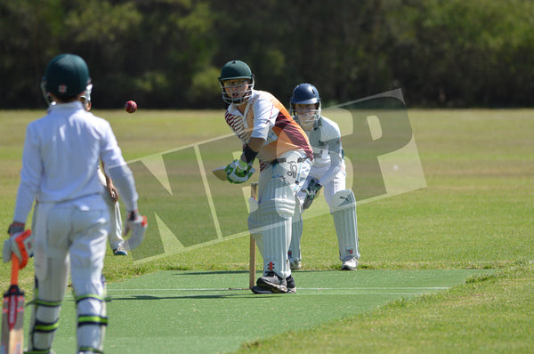 U/13's Harbord Spinners v Forest Green