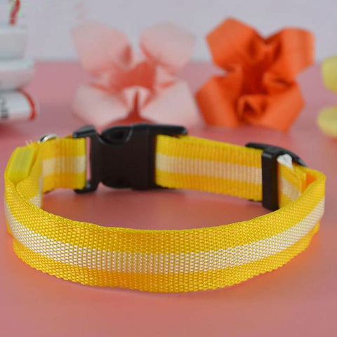 LED Nylon Pet Safety Dogs Collar 7 Colors - www.peterspetsupplies.com