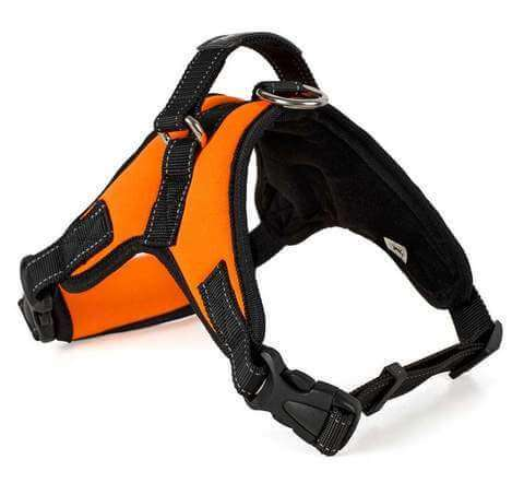 Saddle Harness Dog Vest  Many Colors - www.peterspetsupplies.com