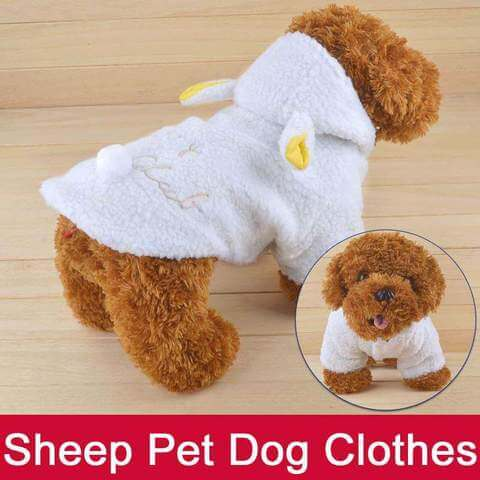 Small Dog Clothes Coat White Puppy Hoodie - www.peterspetsupplies.com