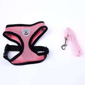 Cute Harness & Leash Set for Small Dogs