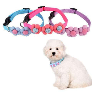 Nylon Collar with Flower Designs for Dogs & Cats