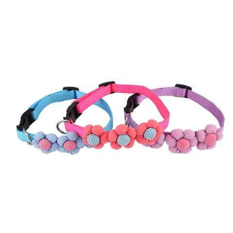 Nylon Collar with Flower Designs for Dogs & Cats - www.peterspetsupplies.com