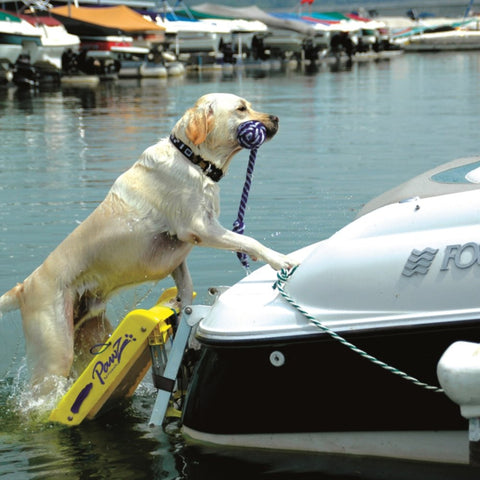 Pawz Pet Products Dog Boat Ladder Yellow - www.peterspetsupplies.com
