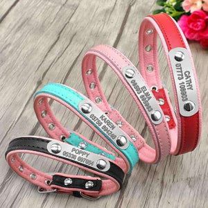 Personalized Leather Dog ID Collars Adjustable Padded - www.peterspetsupplies.com