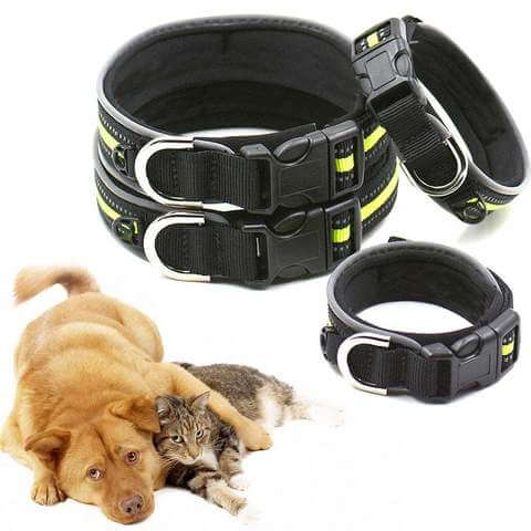 Image of Comfortable Nylon Reflective Night Safety Collar For Cats and Dogs - www.peterspetsupplies.com