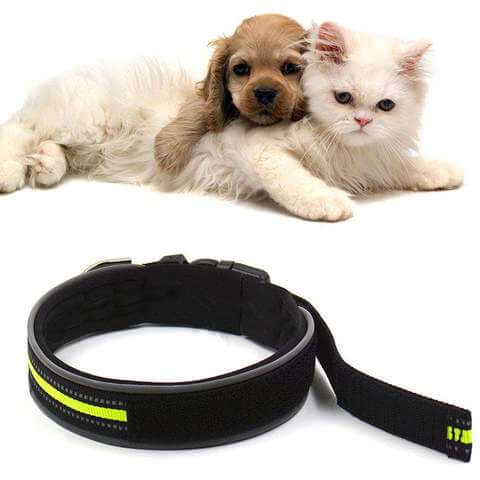 Comfortable Nylon Reflective Night Safety Collar For Cats and Dogs - www.peterspetsupplies.com
