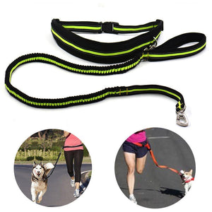 Dolce Pet Hands Free Reflective Dog Leash