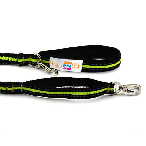Dolce Pet Hands Free Reflective Dog Leash - www.peterspetsupplies.com