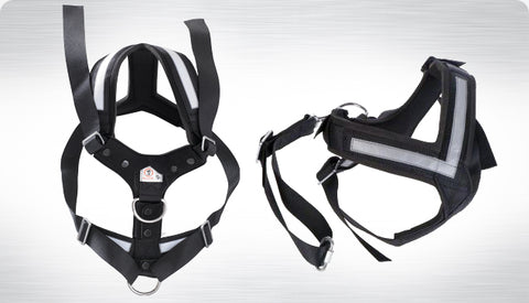Image of AllSafe Harness