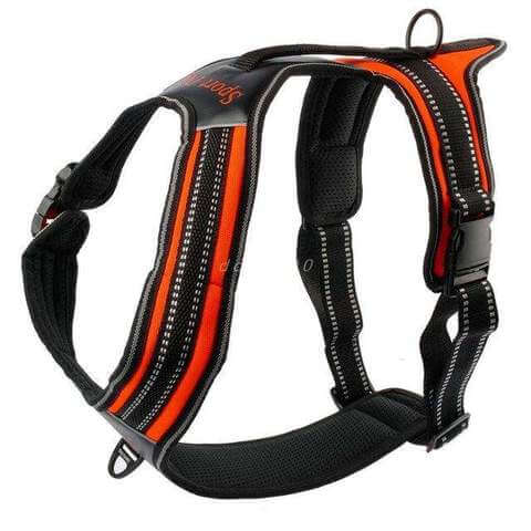 Image of Nylon No-Pull Dog Harness Reflective Outdoor Vest w/ Handle For Medium Large Dogs - www.peterspetsupplies.com