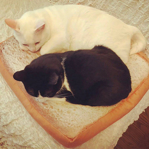 Image of Soft Pet Bed for Cats and Dogs