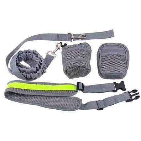 Elastic Dog Leash for Walking & Jogging - www.peterspetsupplies.com