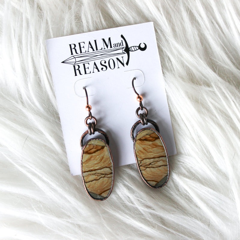 Owyhee Picture Jasper Earrings - a
