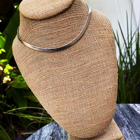 Silvertone Herringbone Necklace and Earring Set