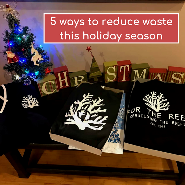 5 ways to reduce waste this holiday season