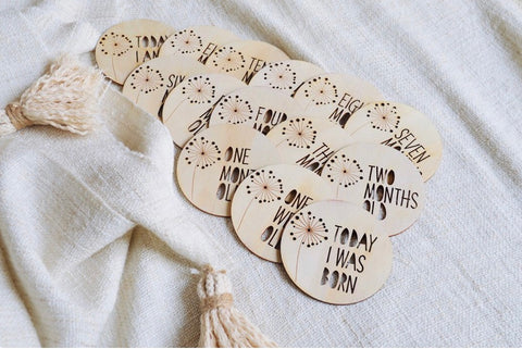 Dandelion Milestone Wooden Disc Set