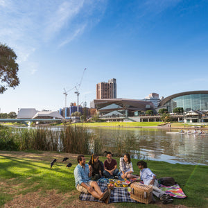Picnic on the Torrens riverbank