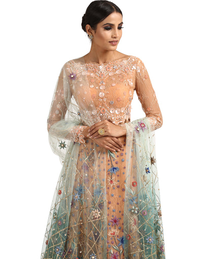 Embroidered Tulle Dupatta- Aqua