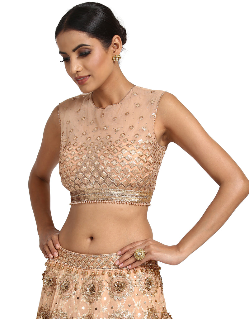 Embroidered Lehenga and Blouse- Peach