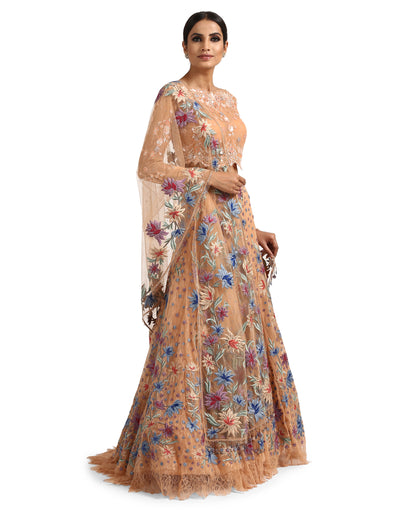 Lehenga Saree with Lace Blouse- Peach