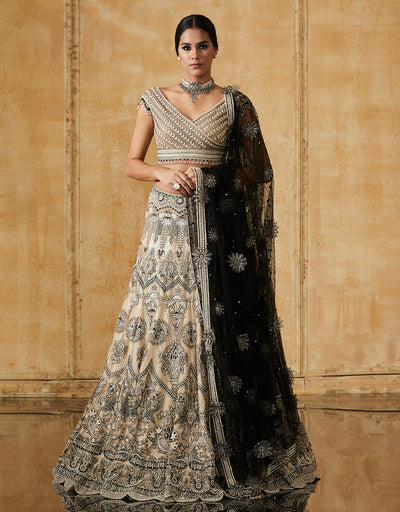 Kalidar Lehenga With With A Hand Embroidered Blouse And Dupatta