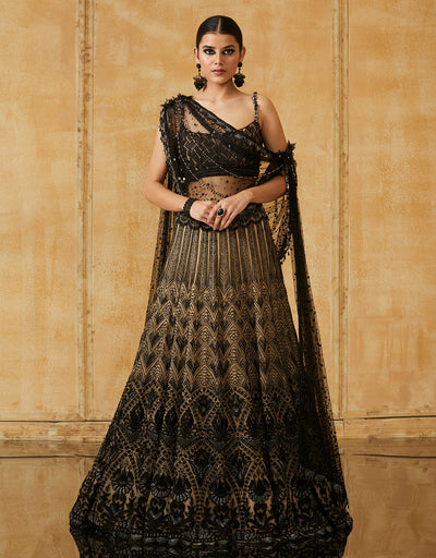 Kalidar Lehenga With Embroidered Blouse