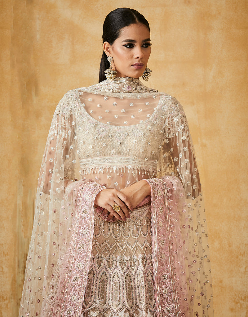 Embroidered Kalidar Lehehga With Crystalised Blouse
