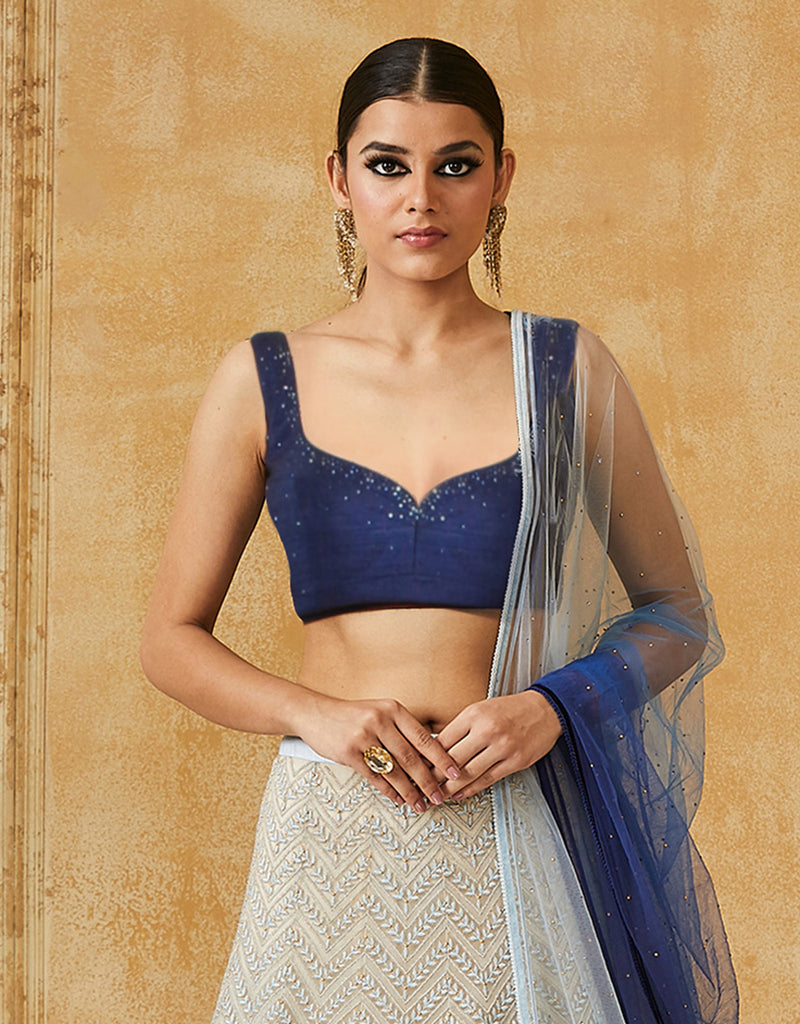 Embroidered Lehenga Paired With Raw Silk Blouse & Net Dupatta