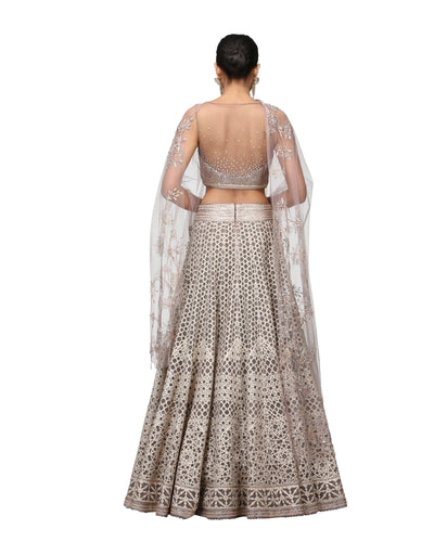 Lazer Cut Lehenga with beautiful border paired with Blouse Dupatta
