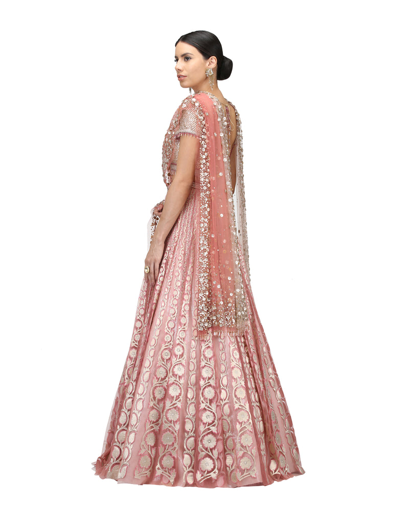 Backless Blouse, embroidered Lehenga and Dupatta