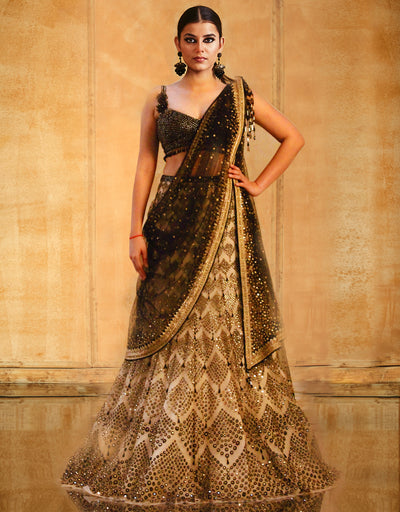 Kalidar Lehenga Saree Crystallized Blouse And Hand Embroidered Dupatta