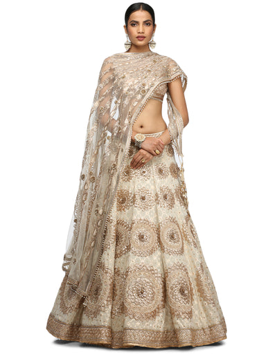 Embroidered Lehenga and Blouse- Ivory