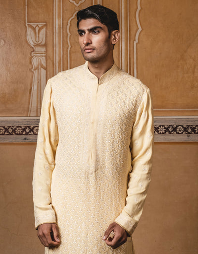 Yellow color kurta ,handcrafted in pure georgette fabric with all over lucknowi chikan work .Paired with churidar.