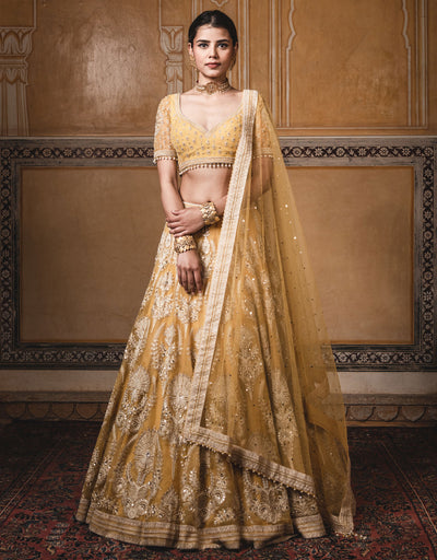 Kalidar Lehenga In Sheer Silk Featuring Resham Aari Embroidery.  Paired With An Embroidered Half-Sleeves Blouse In Chiffon And A Tulle Dupatta With Mukaish Detailing.