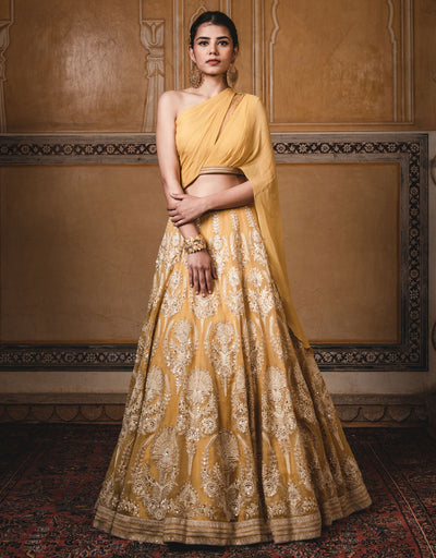 Kalidar Lehenga In Sheer Silk Featuring Resham Aari Embroidery.  Paired With An Embroidered Draped Blouse In Chiffon And A Tulle Dupatta With Mukaish Detailing.