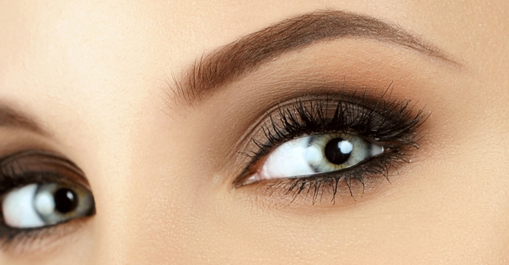 Brow Trends Barneys Salon Supplies