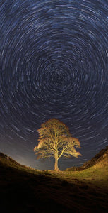 Sycamore Gap Star trails Ref-SC2410