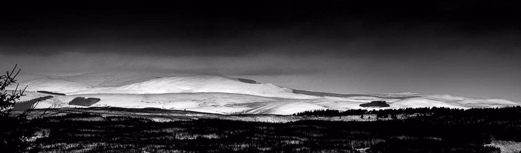 Thrunton Winter Cheviots Ref-PBW184