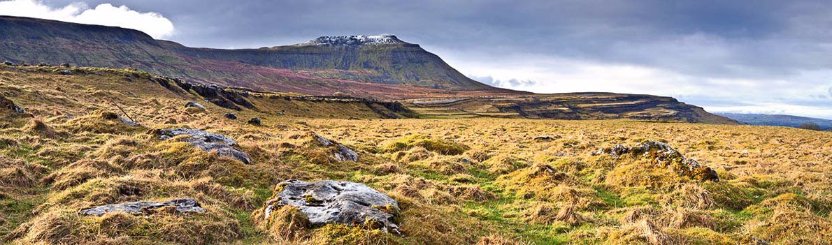 Ingleborough 1 Ref-PC428