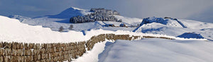 Steel Rigg snow 2 Ref-PC521