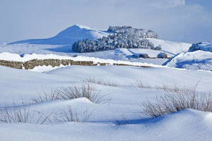 Steel Rigg snow 1 Ref-SC2094