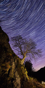 Rannerdale tree Star Trails Ref-SC2425