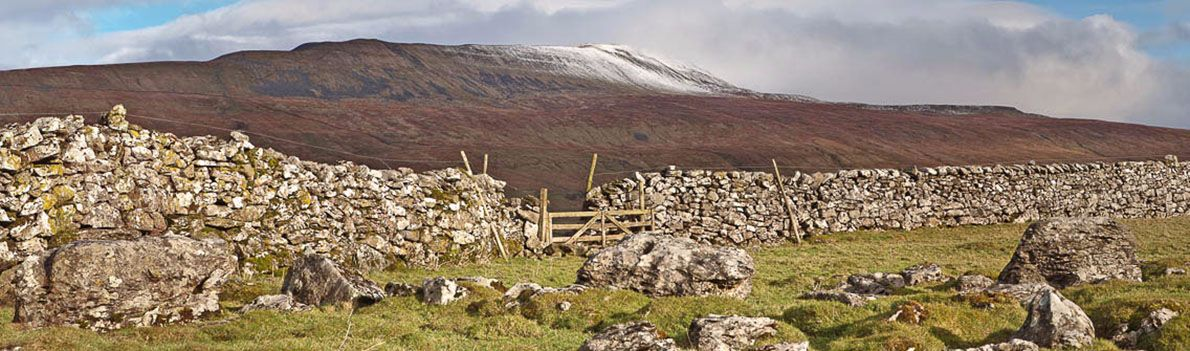 WhernsideStone Wall Ref-PC357