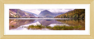 Buttermere grass 2 Ref-PC2320
