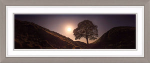 Sycamore Gap by Moonlight Ref-PC2343