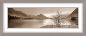 Crummock Water tree Ref-PS347