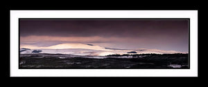 Thrunton Winter Cheviots Ref-PC184